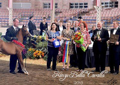 2013 Kinzu Bella Cavalla